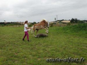 Anaïs-Sarah et Diva - Equitation éthologique