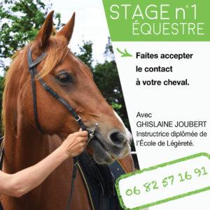 Stage Comment expliquer au cheval les actions de nos mains